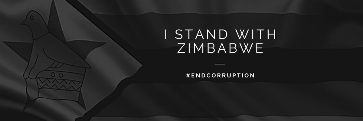 United We Stand. Divided We Fall. #ZimbabweanLivesMatterpic.twitter.com/ALNRnfv2o2