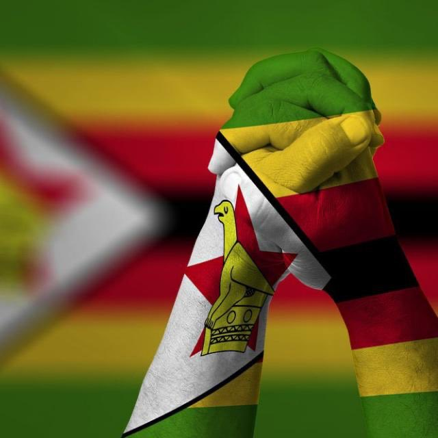 #ZimbabweanLivesMatter https://t.co/LKaXmQGxyU