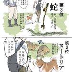 よく田んぼ道を通る人は共感出来るかも?犬との散歩中に遭遇して驚いた生き物3選!