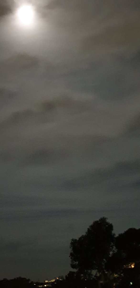 Monday night Full Moon rising high.  #Cloudy #Sydneyskies  Click to view. pic.twitter.com/r1iXW9sxmF
