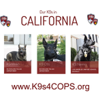 Image for the Tweet beginning: :: Meet our K9s Monday