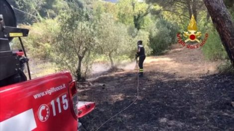 Tragedia sfiorata ad Isnello, bimbi intrappolati nella casa in fiamme, salvati da operaio forestale - https://t.co/cGUYSXnvop #blogsicilianotizie
