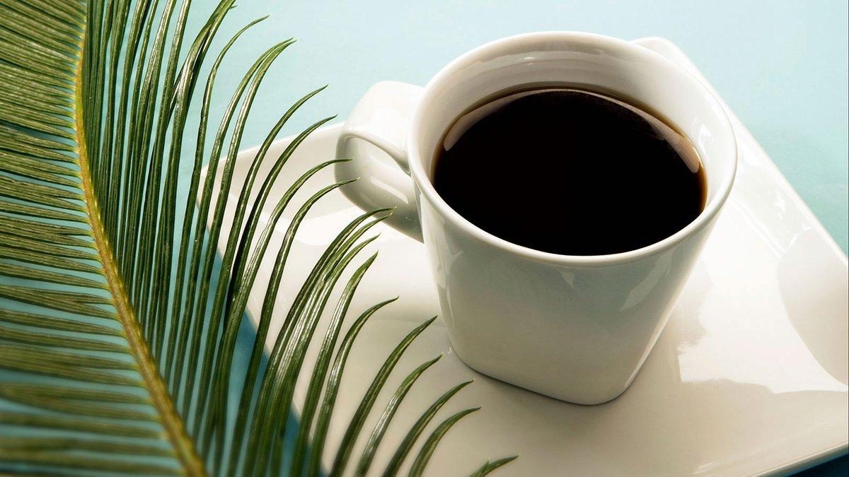 Simple Mornings #odonnellphotograf #productphotography #productphotographer #productphotographystudio #sandiegocommercialphotography #sandiegocommercialphotographer ##ofoto #skipodonnell #sandiego #summer #coffee #simple #tropical #blackcoffeepic.twitter.com/rnw1FH6Vjk