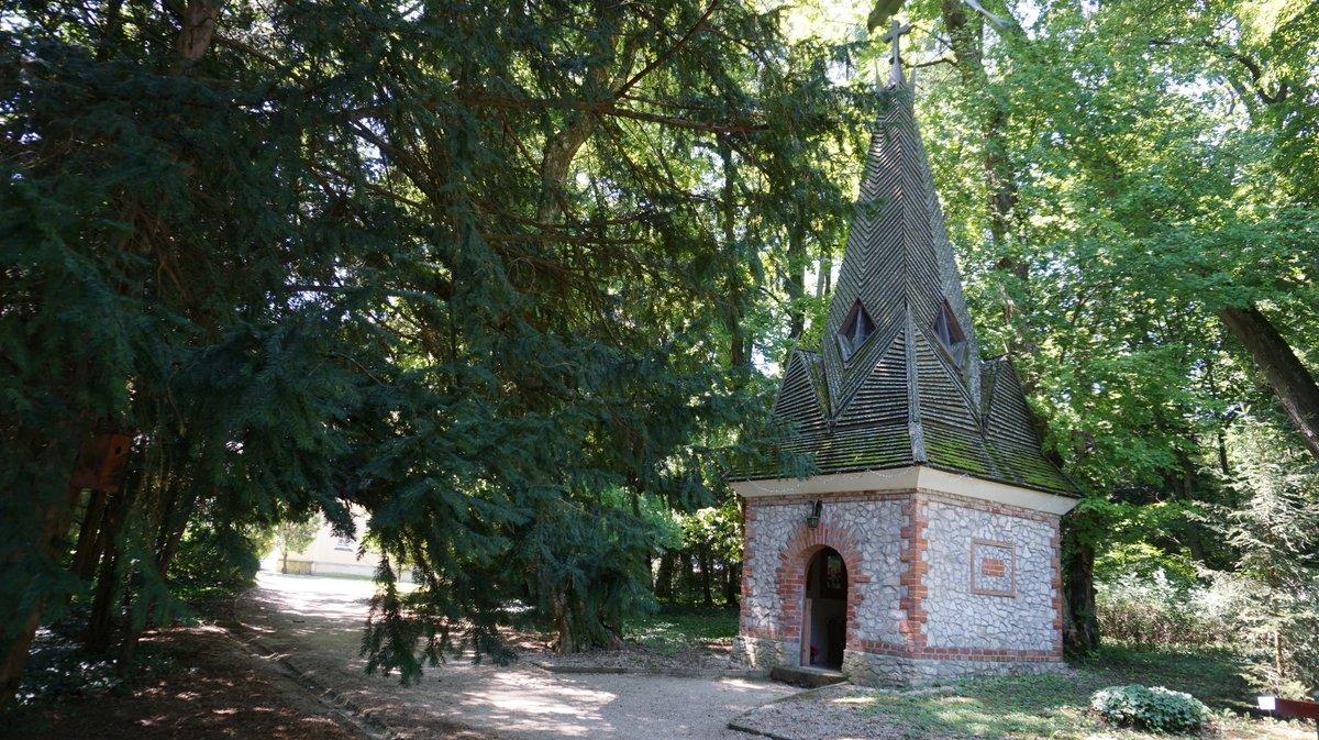 A small chapel in the Szeleste Arboretum, Hungary  #Hungary #nature #NaturePhotographypic.twitter.com/5syDPtAtNW