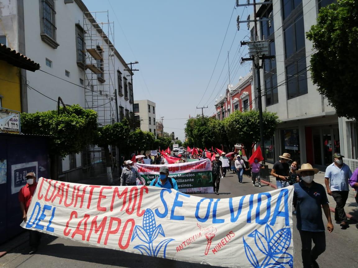 #ElcuauNiegaFertilizante La 4t niega el apoyo al campo en Morelos y nuestros campesinos viven una doble crisis por el mal @GobiernoMorelos encabezado por @cuauhtemocb10