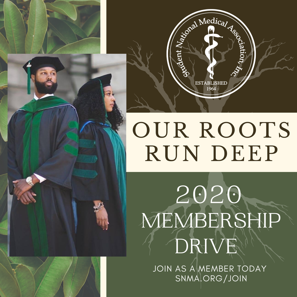 Membership Drive 2020 is officially here! Our roots run deep! We have many exciting things in store. Visit snma.org/join to become a member today. #SNMAMembership2020 #OurRootsRunDeep