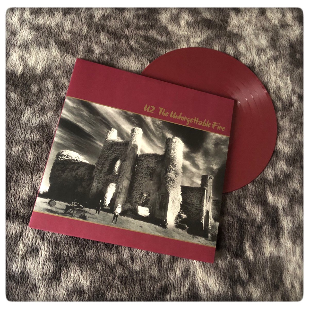 U2 - The Unforgettable Fire - 1984  #u2 #theunforgettablefire #theunforgettablefirevinyl #vinyl #burgundyvinyl #coloredvinyl #colouredvinyl #vinylcollection #myvinylcollection #ilovevinyl #music #ilovemusic #u2vinyl #vinyloftheday #1984pic.twitter.com/qi6wB43lsJ