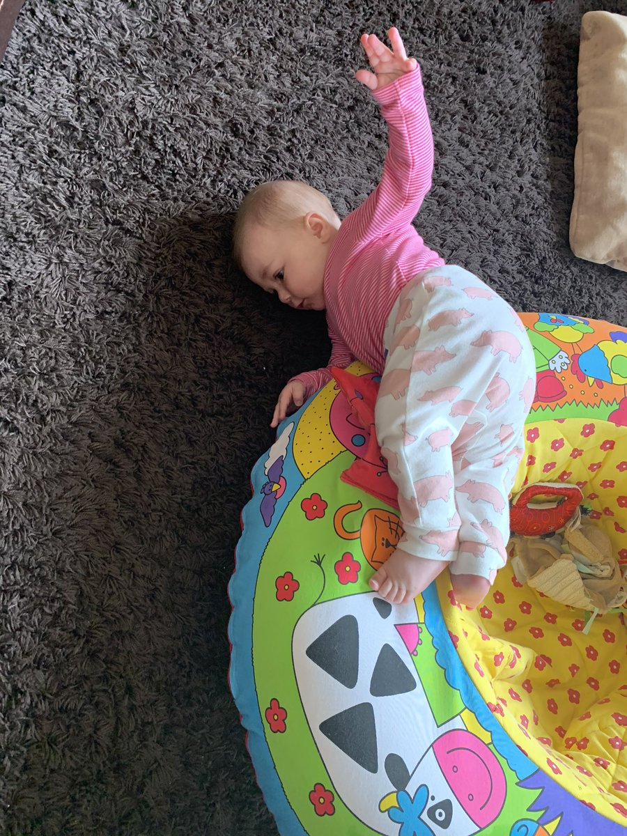 Wild child nothing is safe! 6months old and on the move! #nofear pic.twitter.com/gwEL1FDpVg