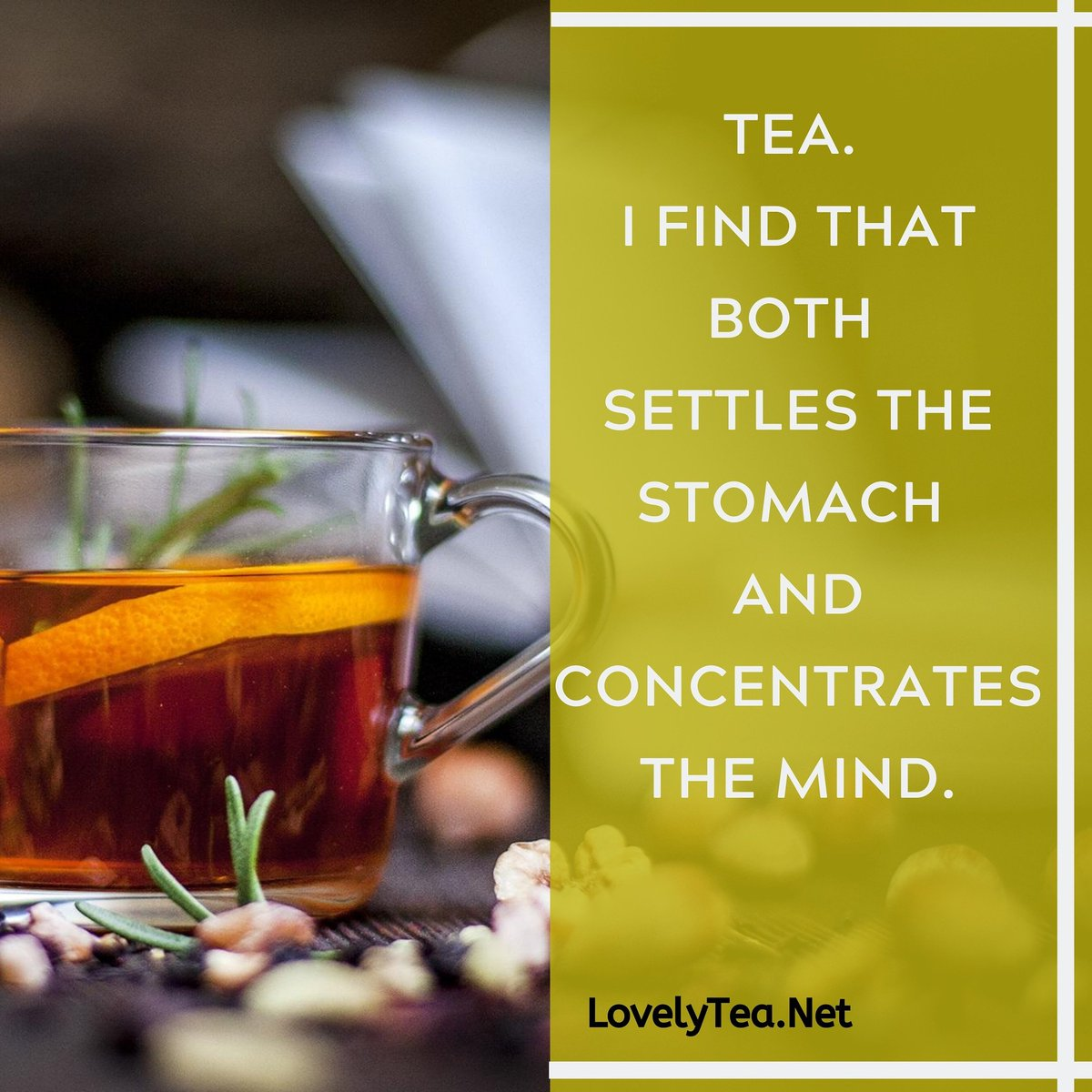 #supportsmallbusiness#motivate #didyouknowfacts #teaholic  #lovelytea #tealovers#matcha #j#ilovetea #teagram #lovelytea___ #healthy #love #lovelyti2002 #teaandseasons #organic #instagood #morningtea #today  #maydiaries #thoughts  #motivationalquotes #lovelyteapic.twitter.com/ym8blycrvT