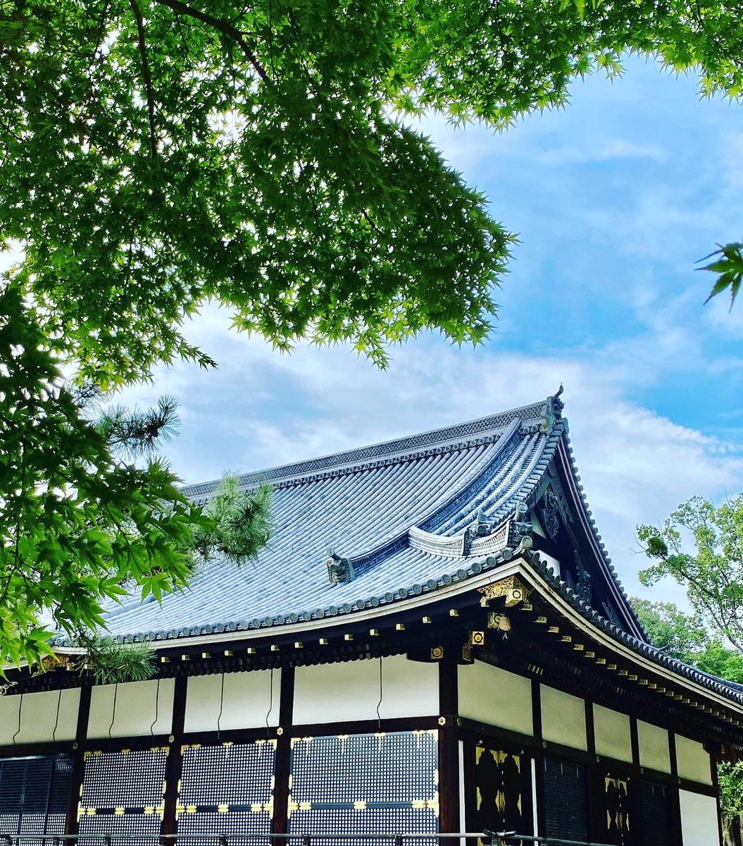 マスクで更に暑い夏、水分補給と熱中症対策を忘れずに💦#仁和寺