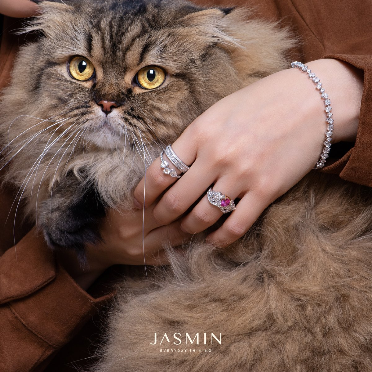 The best therapist has fur, four legs and diamonds.  Discover the Collection: https://bit.ly/3e54EHD   #HappinessAroundYou #JasminFineJewelry ⁣⁣⁣⁣⁣⁣⁣ #JasminEverydayShining⁣⁣⁣ #LongHairScottishfold #CatLovers pic.twitter.com/LdPsz2tbDq