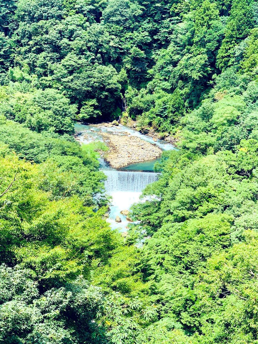 女子旅。朝起きてからは事務所のみなさんと合流して、箱根へ。景色が最高なのと、空気が美味しい。自然薯が有名なお店でお昼ご飯食べました🍚全てが最高に美味しかったです✨☺️#ちぇるの戯言 #箱根
