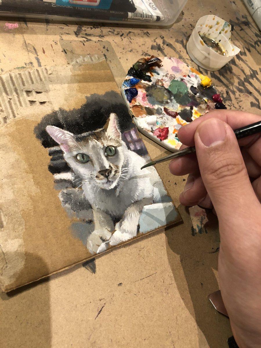 Jewel | Oil painting on cardboard #cat #oilpainting #jewel #art #artist #painting #cardboard #singapore #rip #perportrait #realism #miniatureartpic.twitter.com/M7YzBgMTnK