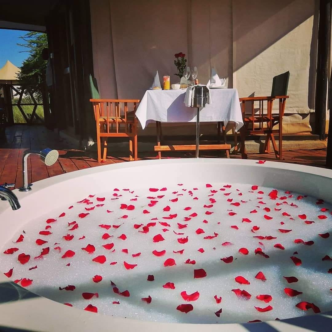 Honeymoon Package #merinesafaris #magicalkenya #TembeaKenya pic.twitter.com/3pSJTtdqn8