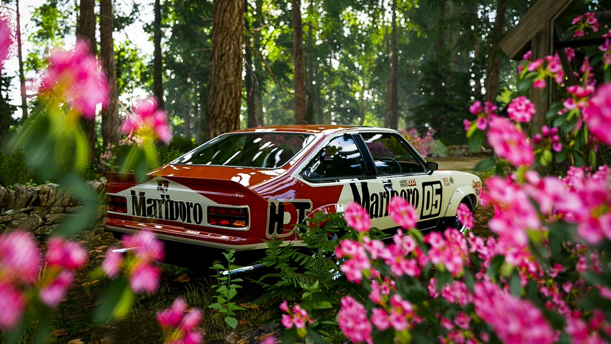 Legendary.... #forzahorizon4 #forzashare #gamingphotography #makeforzalookreal #virtualphotographer #xboxone #forzaportugal #classiccars #instaphoto #gaming #legend #forzaportugal #marlboro #holdenpic.twitter.com/AN5qtZBs6s