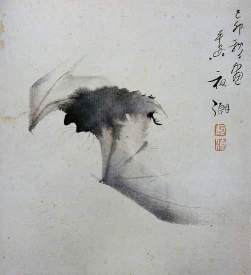 "Yashô (1782-1825) ""Bat in Flight"" Ink on paper (Ashmolean Museum, Oxford. In Maurice Coyaud 'L'Empire du regard'- Mille ans de peinture Japonaise' Ed. Phebus, 1981) pic.twitter.com/eTHWQBafxR"