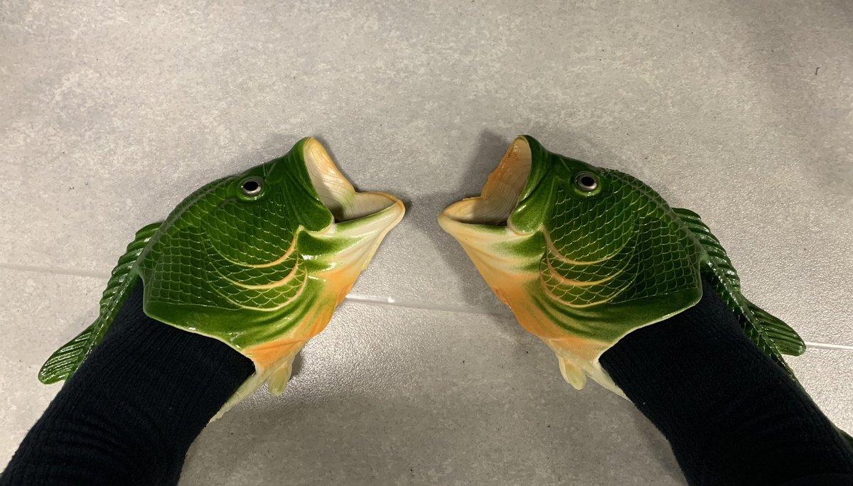 うお 魚 〜〜〜〜〜ッ!!!!