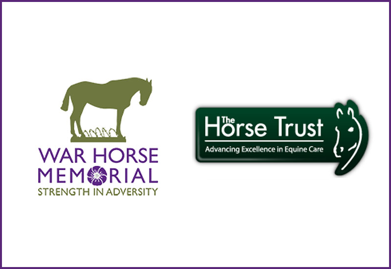 horsetrust photo