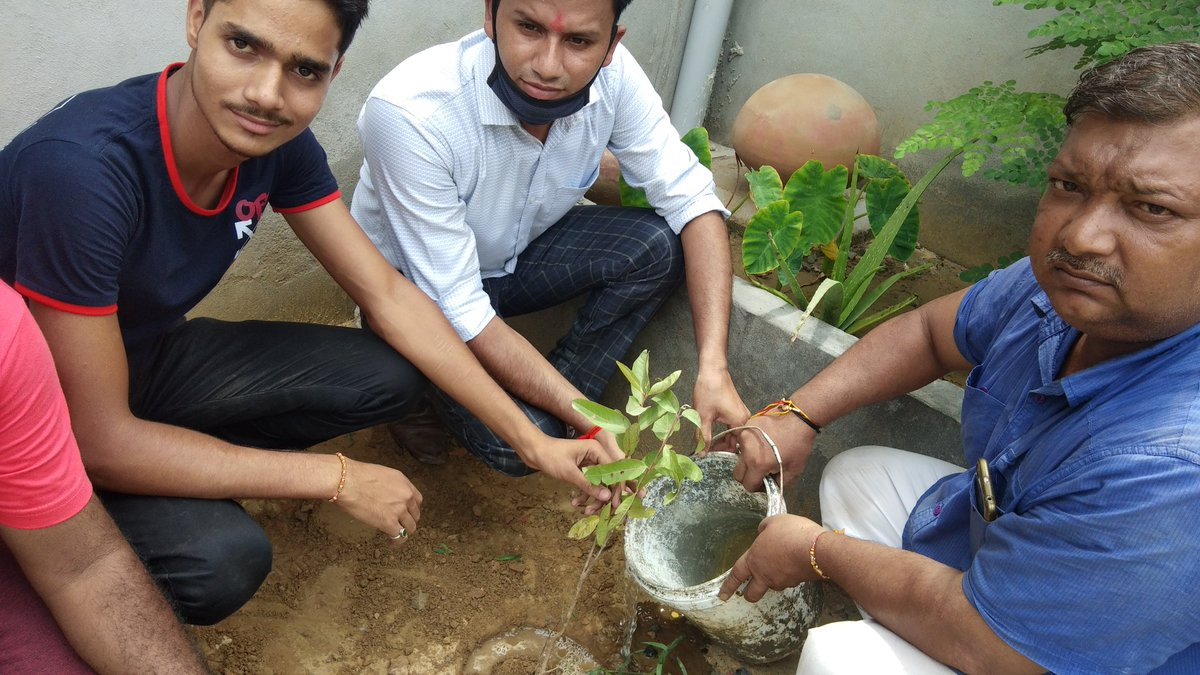 Today we plant trees in are to aware public about importance of trees. We #csc #Kharkhoda  are happy to work as #vle  Tanks to @ashi_apple @dintya15 @cscharyana @chhikaramohit01 @AskSonipat https://t.co/bqW1lJmPuF