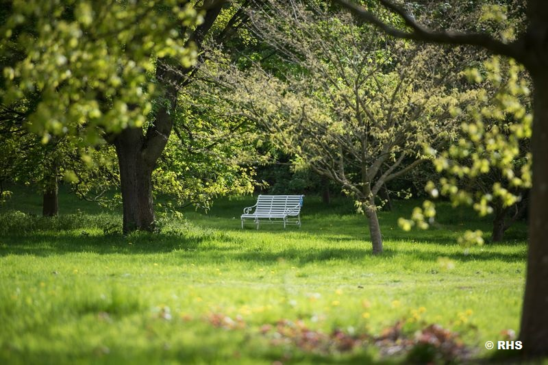 IGNITION will not only improve parks and greenspaces for those who visit it, but also for the environment. If you would like to help create a greener Greater Manchester, fill in this short survey http://orlo.uk/RtN8opic.twitter.com/ktCgUOOMZU
