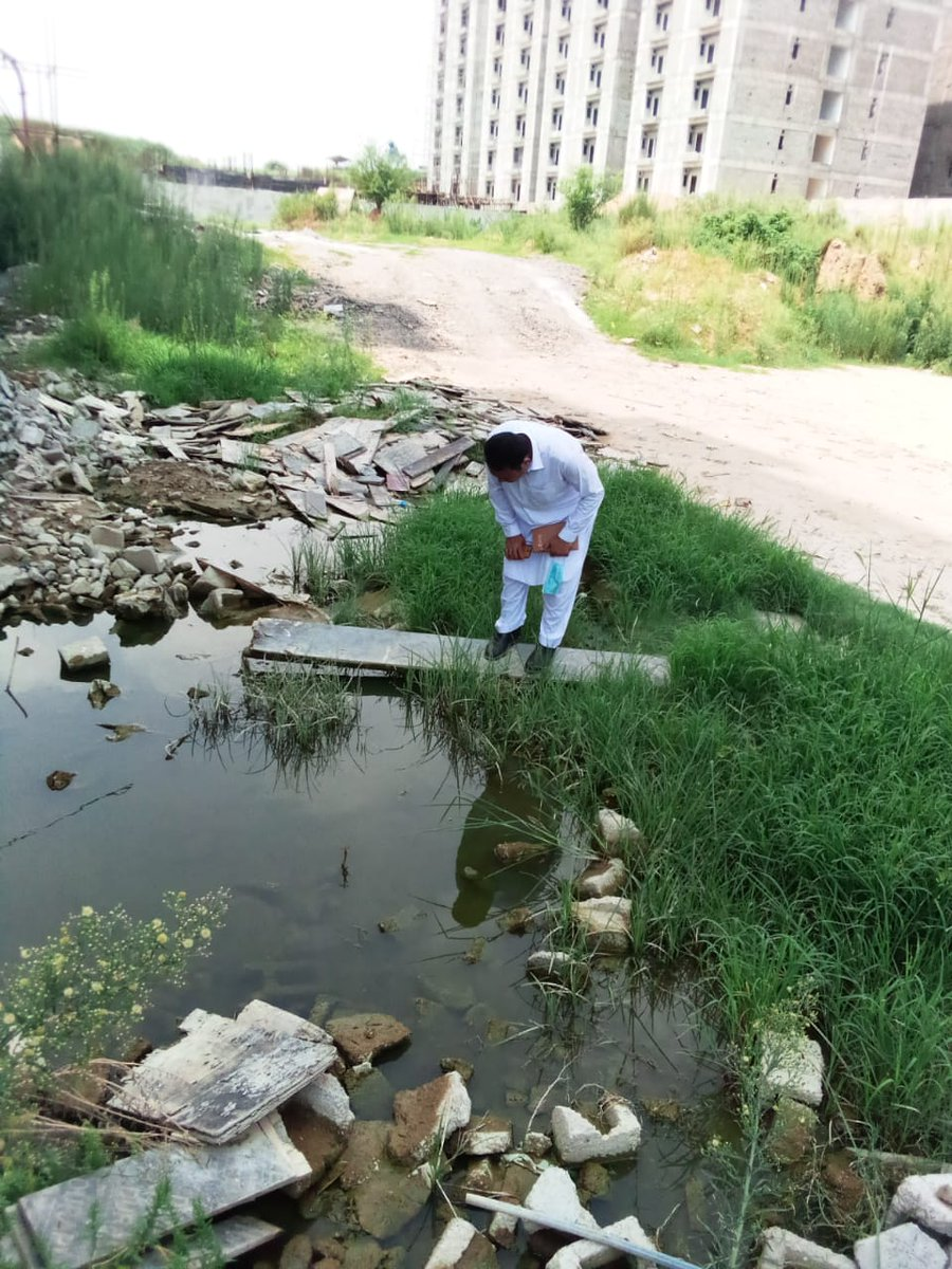 Action against dengue.  #DengueFreeIslamabad 🇵🇰