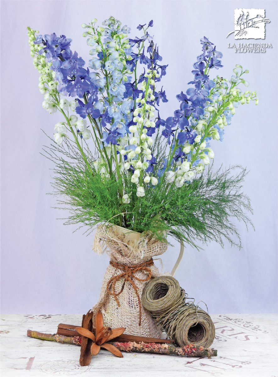 Summer sueños 🍃 #summer #august #pasteltones #stock #vintage #delicatetouch #summerflowers #delphinium #blue #pantone #pantone2020 #weshipdirect #americanfarminecuador #stayhealthy #wearamask #lhf #lahaciendaflowers