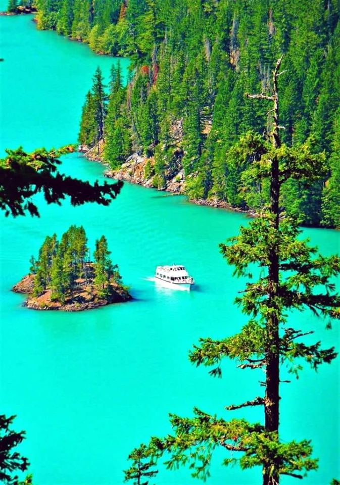 Ross lake,Washington USA #rosslakewashington #Washington  #Rosslake #lake  #Travel https://t.co/FWIXpbesld