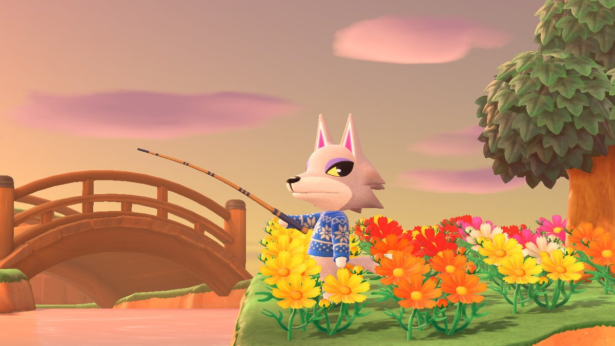 Relaxing sunsets on Sunnyshore! #AnimalCrossing #ACNH #NintendoSwitchpic.twitter.com/GEEJ009jqq