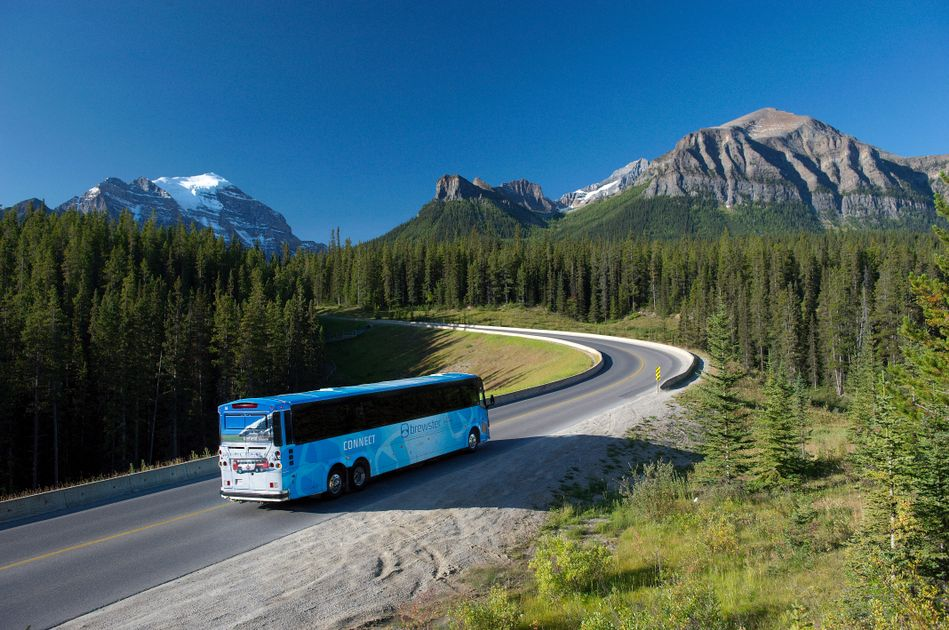 Motorcoach Sales Down 83% in Q2, according to ABA Foundation Report: Also, pre-owned coach sales were down 150 vehicles and new new coach sales were down 294 units, combining for a total 444 less units sold in the second quarter compared to the first… https://t.co/iZFKV6wGSm https://t.co/2POG9sr2WX