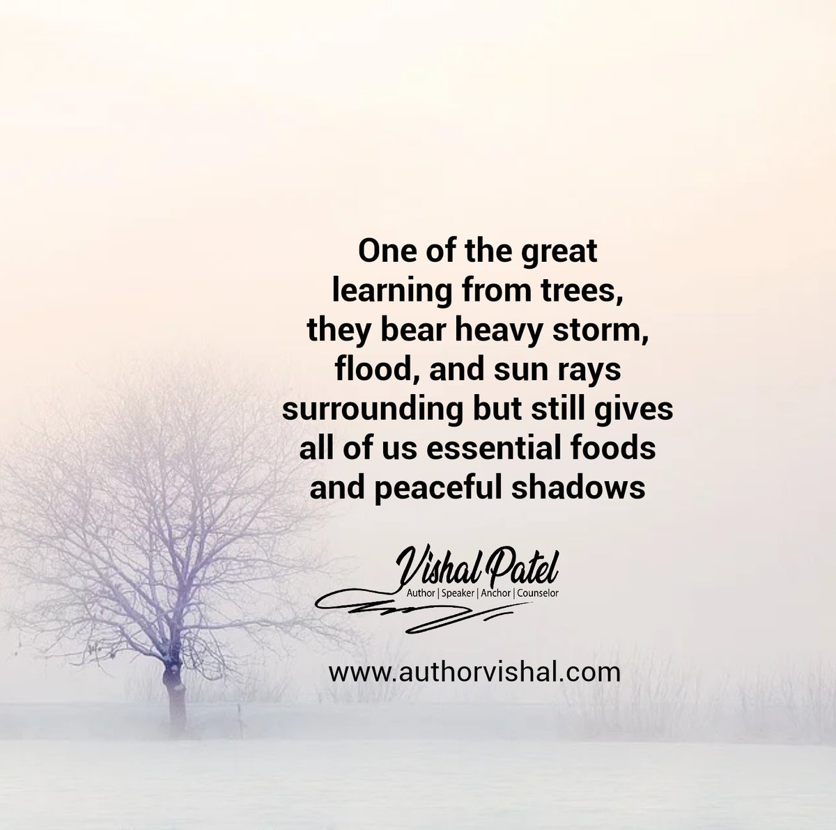 #authorvishalpatel  #MotivationalQuotes #Motivation #motivational #inspirational #Inspire #inspiration #indianwriters #writerscommunity #writers #writerslife #writersofinstagram #writersofig #indianwriters #writerscommunity #learning #trees #bear #heavy #storm #flood #sunrayspic.twitter.com/qJ4oWlrud3