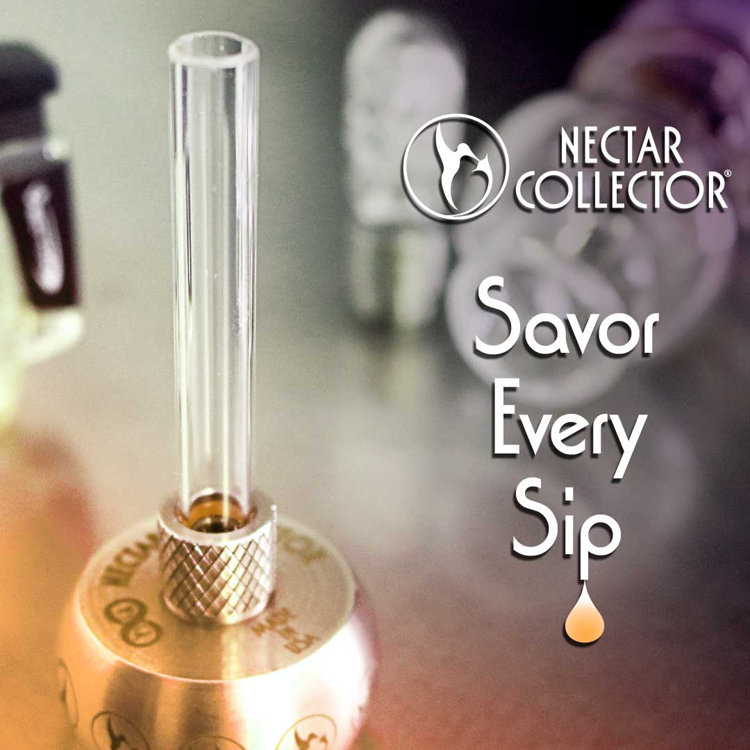 Holy Free Tip Batman. It's back. Pick up some new gear for your utility belt and spend $150 get a free Infinity Tech stinger tip and collar free.  https://soo.nr/V0RQ  #free #freestuff #freeglass  #highlife #dablife #dab #420 #dabs #highsociety #nectarcollector #710 #glassartpic.twitter.com/Dldjxhh2yu