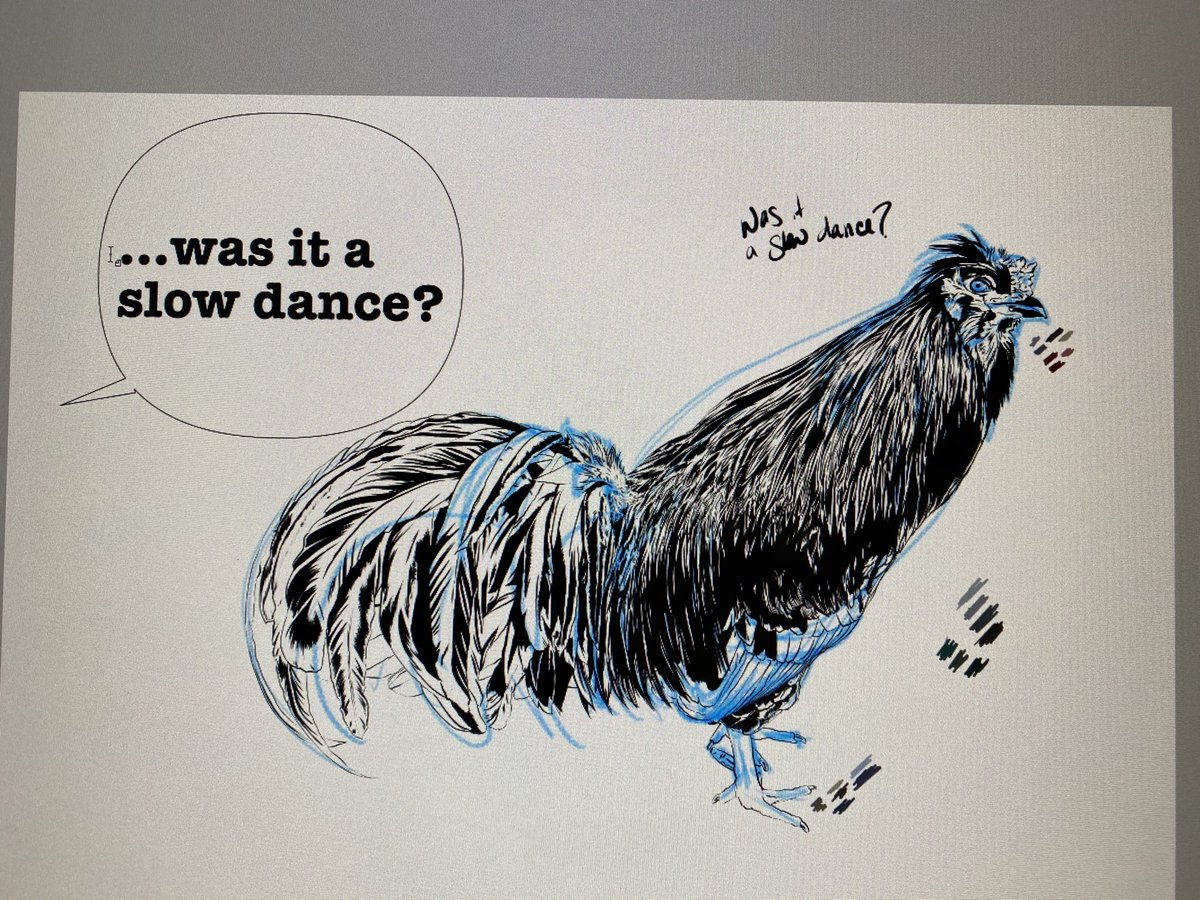 Line work, finished (sneak peek at his word bubble) #art #WIP #digitalillustration #animalillustration #chickens #poultry #birdillustration #clipstudiopaint #disabledartist #coloradoartist pic.twitter.com/4mXCkKvouO