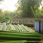 Image for the Tweet beginning: Residuo Cero: pajitas de hierba,