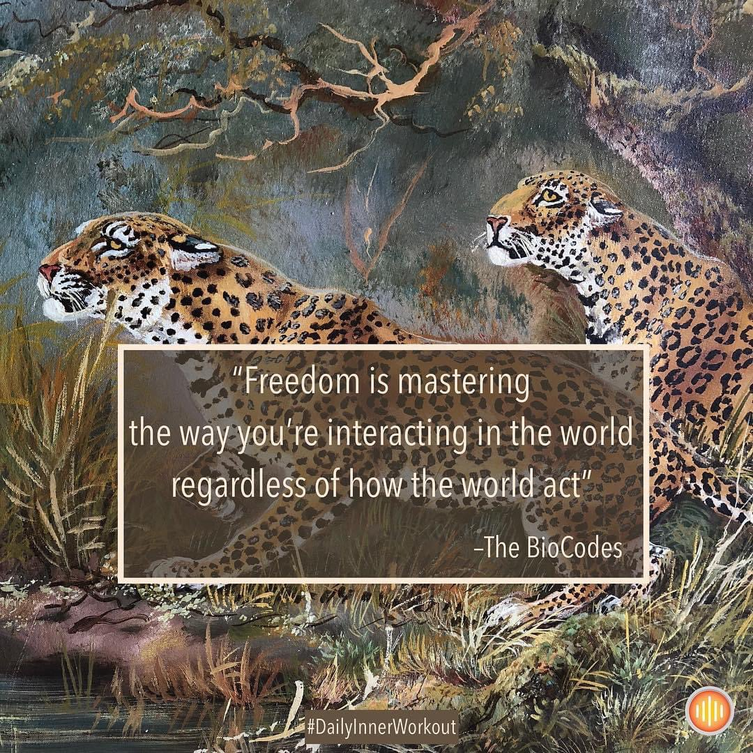 #DailyInnerWorkoit  Freedom is mastering the way you're interacting in the word regardless of how the world acts.   #freedom #wellbeing #wednesdaymorning #qotd #mindsetiseverything pic.twitter.com/w9ZXoLhGKY