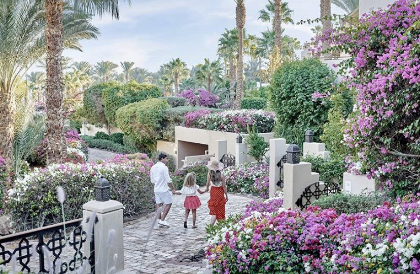 Between the glittering sun rays and scenic lush greenery, find your family's hideaway @fssharmelsheikh  #Summer #FourSeasons #SharmElSheikh #Egypt #RedSeapic.twitter.com/6qXKW6Lqyf