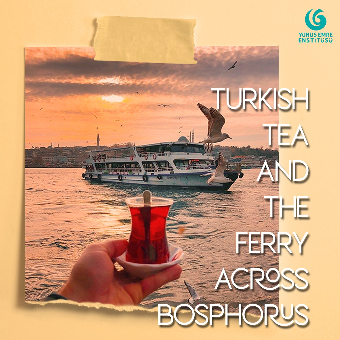 Turkey's tea culture is endless! It is one of the major sources of caffeine throughout the country. Every spot with a view has a tea-house or a tea-garden.    #Turkey #Pakistan #Tea #Turkishtea #Redtea #Blacktea #Tourism #Boshphorous #Istanbul #Ferry #Pakturk #Turkish #Beverages pic.twitter.com/RrWn5nJna0