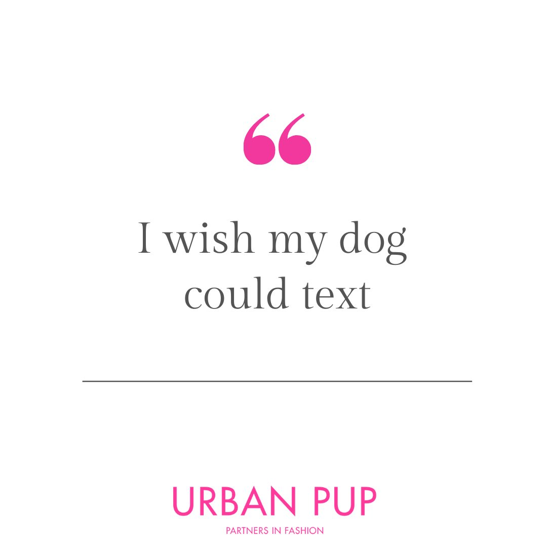 Who else wishes their dog could text now we aren't at home quite so much #urbanpup #ifdogscouldtext #lockdown #dogsofinstagram #dogmemes pic.twitter.com/OyedpaWdFZ