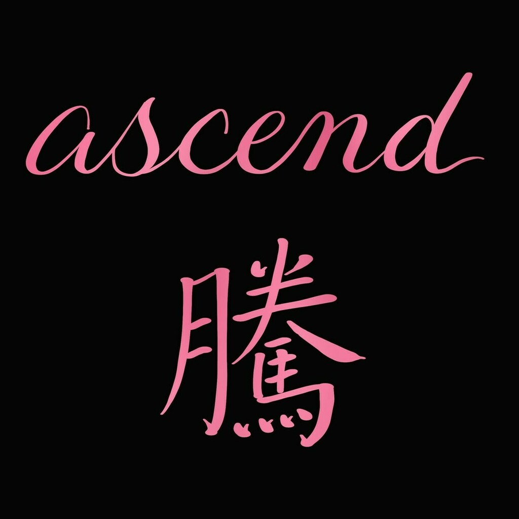 Ascend 騰⠀ ⠀ #chinesecalligraphy #chinese #handlettering #calligraphy #procreate #procreatelettering #wordpresspic.twitter.com/GGthzIwkLG