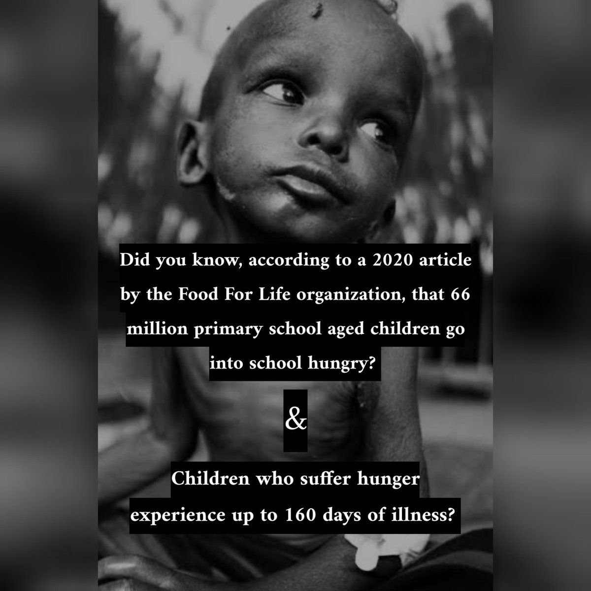 VITAMEAL A highly nutritious meal that is expertly designed to address the needs of malnourished children ° ° #worldhunger #starvingchildren #donationsneeded https://ffl.org/15280/children-hunger-statistics/…pic.twitter.com/NALg3Q7Yte