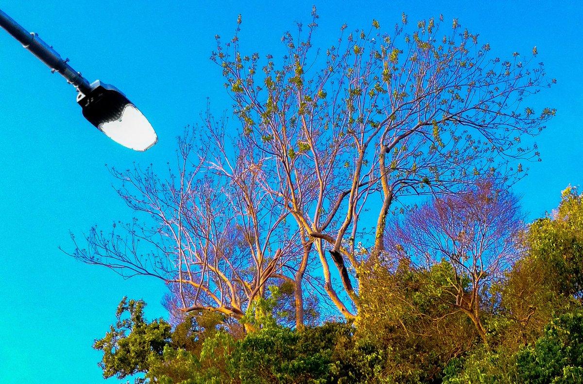 #ig_masterpiece #ig_exquisite #ig_shotz #global_hotshotz #master_shots #exclusive_shots #worldshotz #theworldshotz #pixel_ig #photographyislife #photographysouls #photographyeveryday #iglobal_photographers #ig_great_pics #ig_myshot #justgoshoot #shotzdelightpic.twitter.com/GAWUJLHRMI