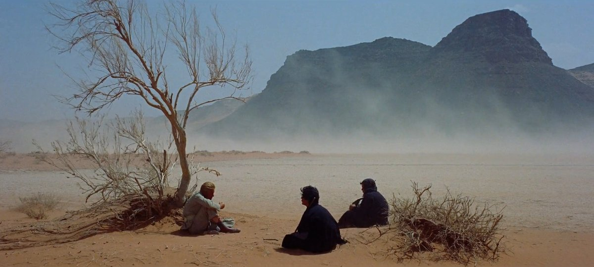 #LawrenceofArabia (1962) Cinematographer: #FreddieYoung . #PeterOToole @CanetCinema @FilmsFilming @wonderful_g @KwizkingAnthony @Kinetograph @cinemaofdreams @CultoftheCinema @TinaMarie_80s @WeCinemapic.twitter.com/AYBZX17mJz