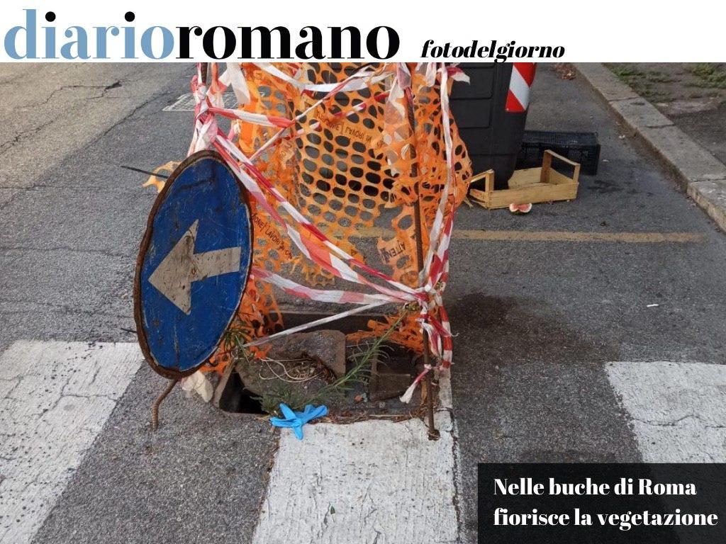 test Twitter Media - Via G. Paisiello. Sulle strisce pedonali questo tombino sfondato sta così da tempo, tanto che sta crescendo l'erba al suo interno. . #Roma #fotodelgiorno 📸 https://t.co/ft6rb07Cc5