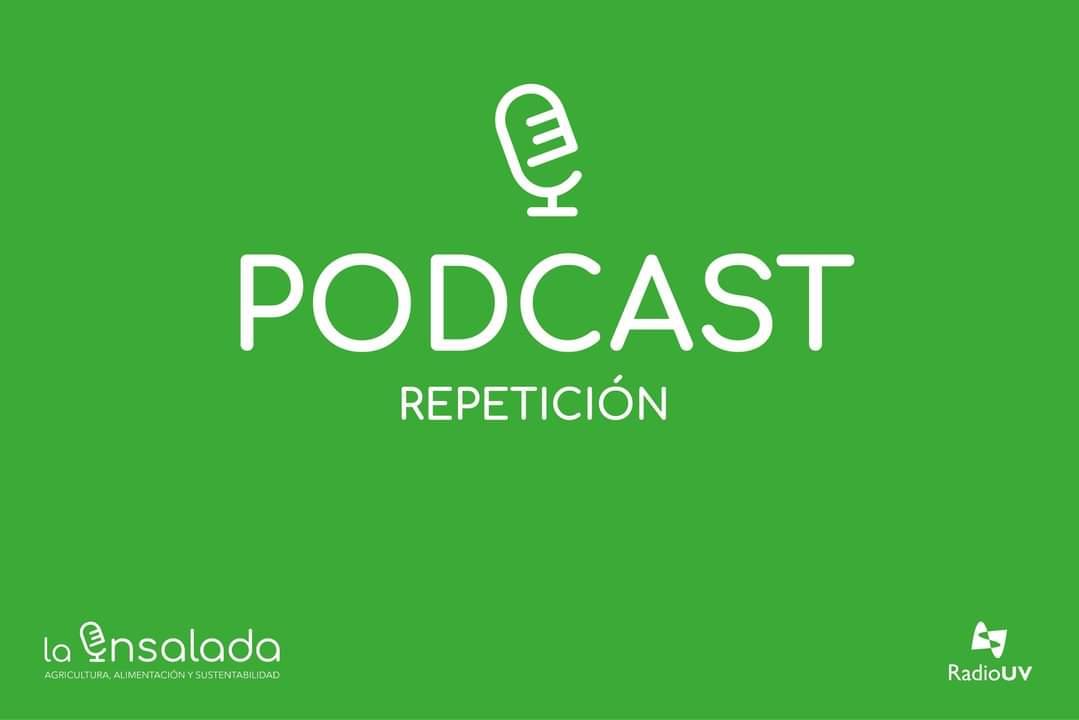 Escucha aquí el #PODCAST #REPETICIÓN 🥗🎧👇🏽 🥗🥑🍅🌽🍏 https://t.co/3TRdQoYwy1  #LaEnsaladaDeLaCasa @RadioUV https://t.co/TMpeYesrCI