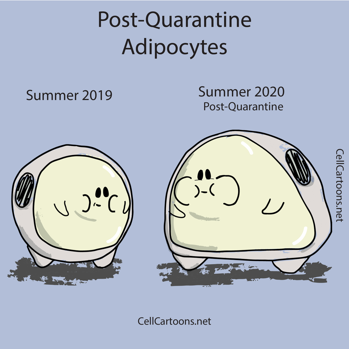 These are my adipocytes after not having had a chance to workout in +3 months. They keep getting bigger and bigger #adipocytes #fatcells #CellCartoons #biology #laboratory #cellbiology #medicalart #sciart #scienceart #sciencecommunication #sciencecomics #biologymeme  pic.twitter.com/HedGUdMIPq