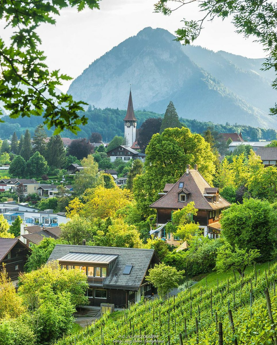 Good Morning my friends  Have a beautiful day  #beautifuldestinations #Switzerland #nature  switzerland_by_giorgi pic.twitter.com/J2bvB3LGPU