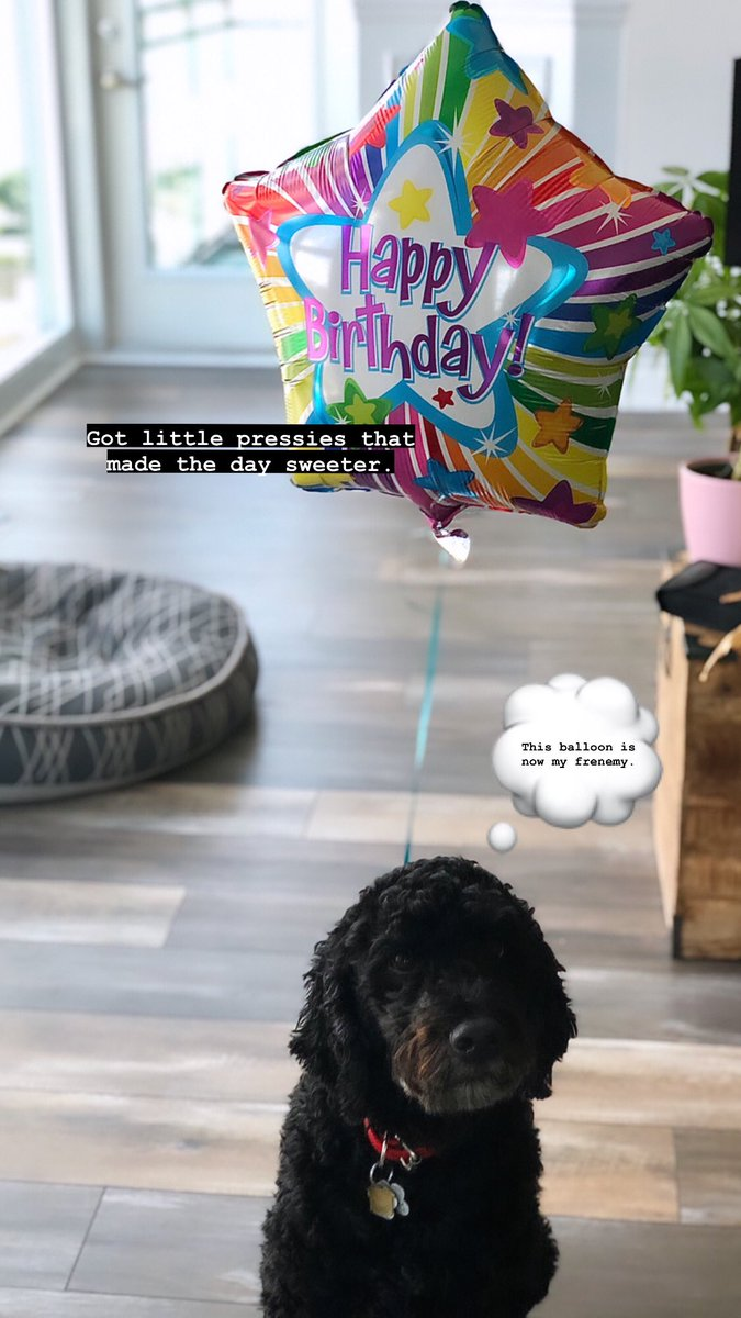 Today's Birthday Schedule 2/2 #birthdaygratitude