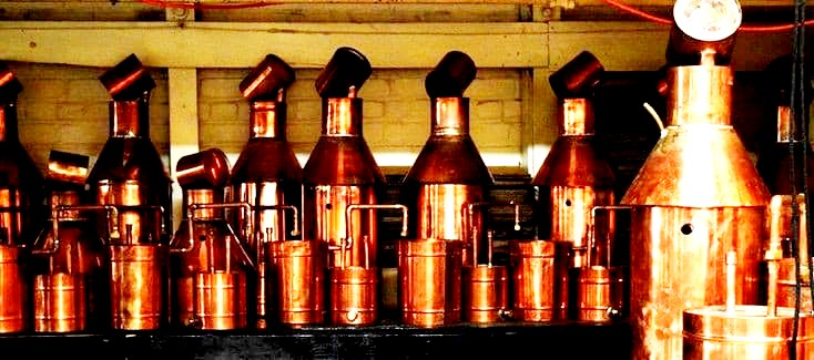 Purchase a product here at The Distillery Network and get a lifetime warranty on your purchased unit you won't regret the quality. Call us 1-603-997-6786 or visit http://www.buyamonshinestill.com #distilling #Whisky #BEER #Brewerspic.twitter.com/v5nFHADsen