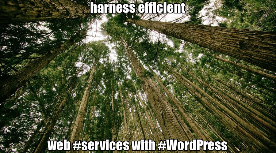 harness efficient web #services with #WordPresspic.twitter.com/6KDTkXiiL0