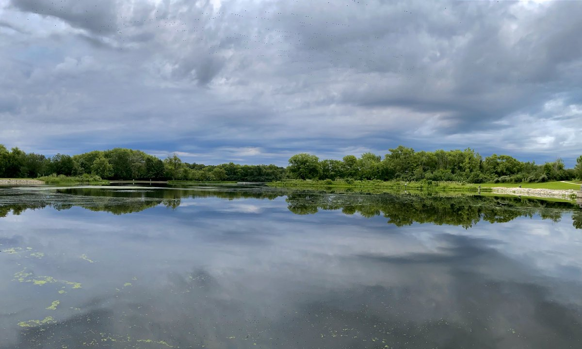 This morning's sweet view comes to us from out at Monee Reservoir. So peaceful and serene! (Photo by Chad Merda) #reconnectwithnature #nofilterneeded #naturephotography #letsgosomewhere #willcounty pic.twitter.com/tWb1ehZyAT