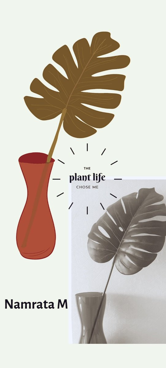 The plant life. #illustrationart #ilovemyearth #greatglobalcleanup @toeorganization @EarthDay_India